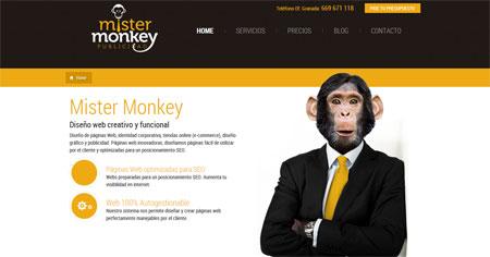 Mister Monkey